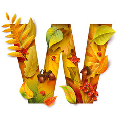 Autumn stylized alphabet with foliage letter w vector