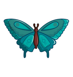 Butterfly morpho anaxibia icon cartoon style vector