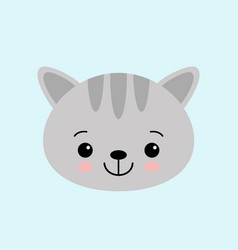 cat face character a cute gray kitten vector image