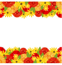 Flower banner with bright colors of gerberas vector