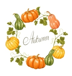 frame with pumpkins decorative ornament from vector image