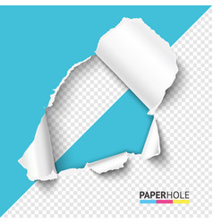 Half empty hole in teared paper on half vector