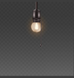 light bulb on cord lighting element vector image