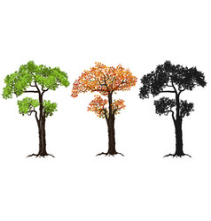 red green and silhouettes tree vector image