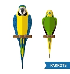 Sitting Parrots Set vector