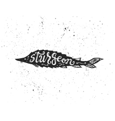 Sturgeon lettering in silhouette vector