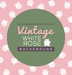 Vintage White Roses Background vector image