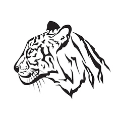 image of an tiger vector image