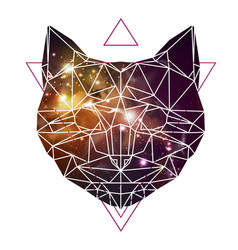 abstract polygonal tirangle animal cat vector image