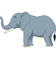 Cartoon elephant isolated on white background vector