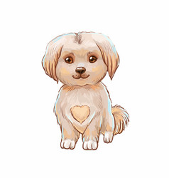 Cute puppy with heart on belly vector