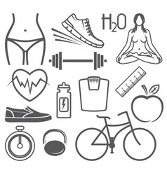 healthy lifestyle vector image