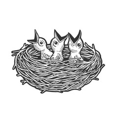 Nestling bird in nest sketch engraving vector