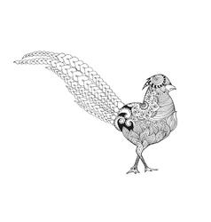 Zentangle stylized pheasant vector image