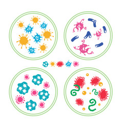 Colorful bacteries in petri dish vector