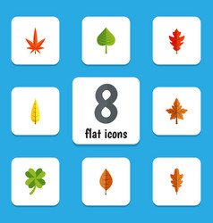 flat icon leaves set of linden foliage leafage vector image