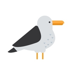Great black-backed gull larus marinus sea wildlife vector image
