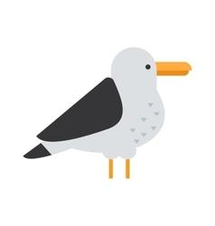 Great black-backed gull larus marinus sea wildlife vector image