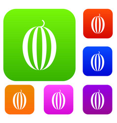 Striped melon set collection vector