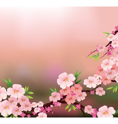 The beauty of fresh flowers vector image
