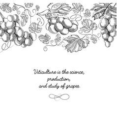 typography decorative design card doodle vector image