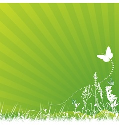 Butterfly and Meadow vector image vector image