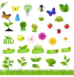 Eco set with nature icons vector
