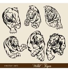 tiger set vector image