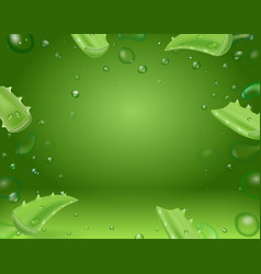 Aloe vera leaves realistic on green background vector