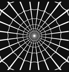 cobweb or spider web on dark background vector image