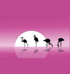 Flamingo on lake scenery silhouettes vector