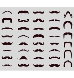 Moustache icon set vector image