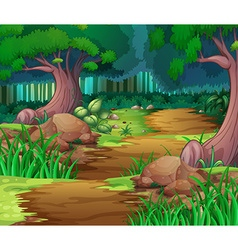 Nature scene with hiking track into the woods vector image