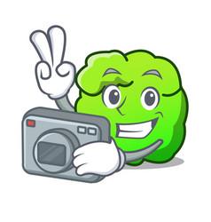 Photographer shrub mascot cartoon style vector