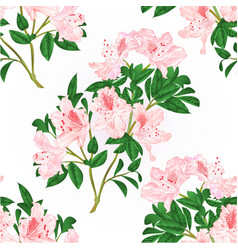 Seamless texture light pink rhododendron twig vector