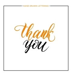 Thank you text isolated on white background vector image