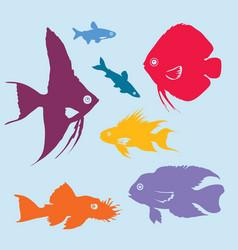 colorful aquarium fish silhouettes set vector image vector image