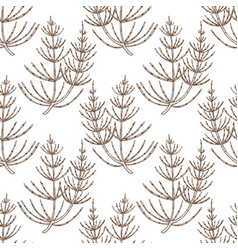 Equisetum pattern in hand-drawn style vector