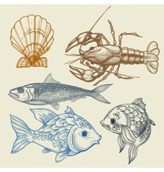 Fish lobster shell set vector image