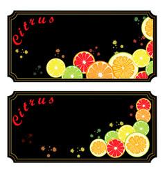 Ripe citrus vector