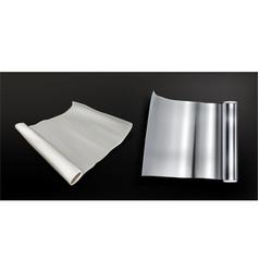 rolls aluminium foil and white baking paper vector image