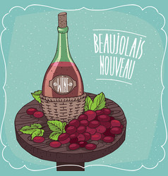 Still life with red wine and grape vector