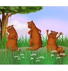 Three wild animals at the road vector