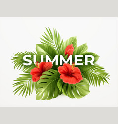 tropical summer background tropical palm leaves vector image