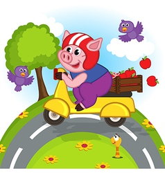 pig riding a scooter vector image vector image