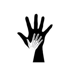 anatomy hands vector image