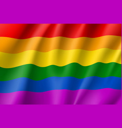 rainbow lgbt waving flag vector image