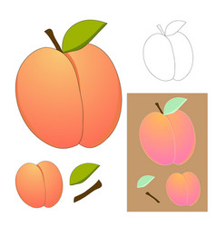 cute peach isolated on white background vector image