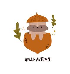 cute raccoon sitting in an acorn autumn scene vector image