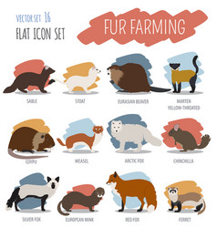 fur farming flat design vector image